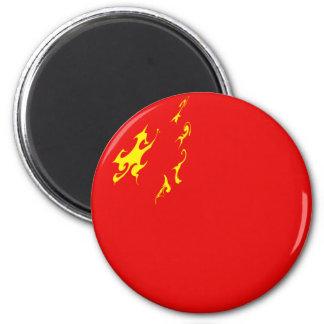 China Gnarly Flag Magnet