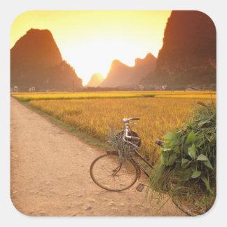 China, Guangxi. Yangzhou, bicicleta en país Calcomanía Cuadrada