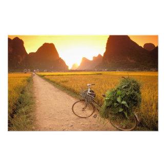 China, Guangxi. Yangzhou, bicicleta en país Impresion Fotografica