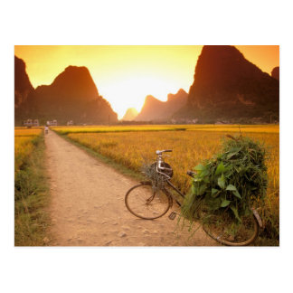 China, Guangxi. Yangzhou, bicicleta en país Postales