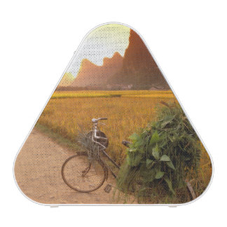 China, Guangxi. Yangzhou, Bicycle on country Bluetooth Speaker