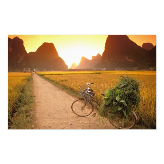 China, Guangxi. Yangzhou, Bicycle on country Photo Print
