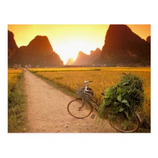 China, Guangxi. Yangzhou, Bicycle on country Postcard