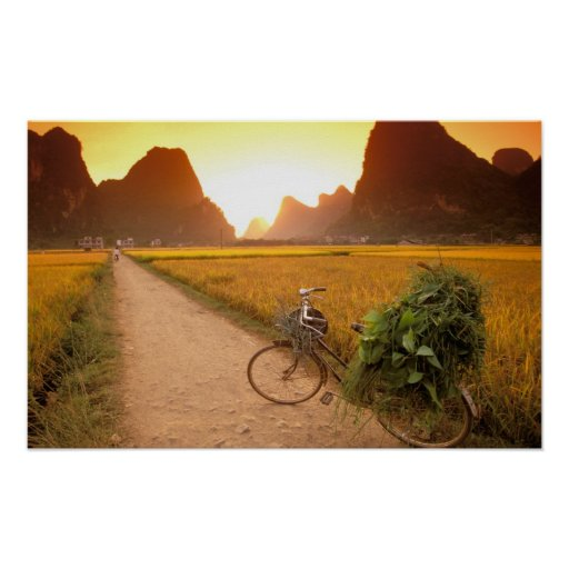 China, Guangxi. Yangzhou, Bicycle on country Poster