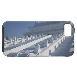 CHINA, Heilongjiang Province, Haerbin (Harbin). 2 iPhone 5 Cover