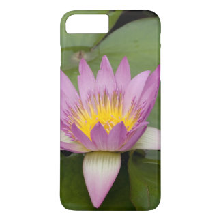 China, Hong Kong, New Territories. Chi Lin iPhone 8 Plus/7 Plus Case
