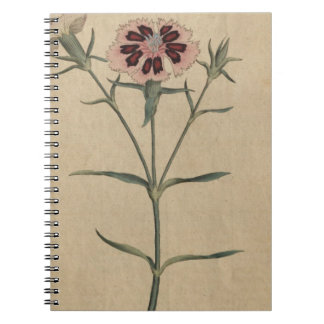 China India Pink Flower Notebook