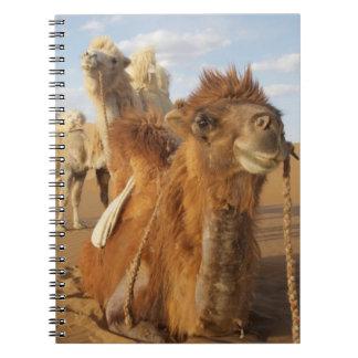 China, Inner Mongolia, Badain Jaran Desert 2 Notebook