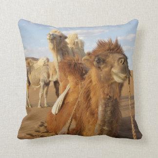 China, Inner Mongolia, Badain Jaran Desert 2 Throw Pillow