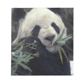 China, reserva de naturaleza de Wolong. Alimentaci Libreta Para Notas