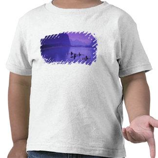 China río de Li Pescadores del cormorán Camisetas