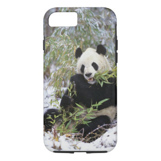 China, Sichuan Province. Giant Panda feeds on iPhone 8/7 Case