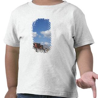 China, Tibet, Lhasa, Potala Palace T-shirt