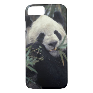 China, Wolong Nature Reserve. Giant Panda feeds iPhone 7 Case