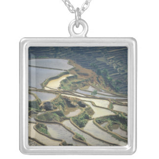 China, Yunnan Province. Flooded rice terraces of Custom Necklace