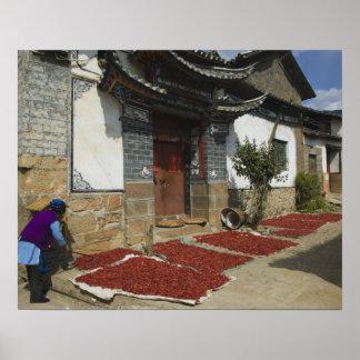 CHINA, Yunnan Province, Tianshengying. Drying Poster