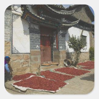 CHINA, Yunnan Province, Tianshengying. Drying Square Sticker