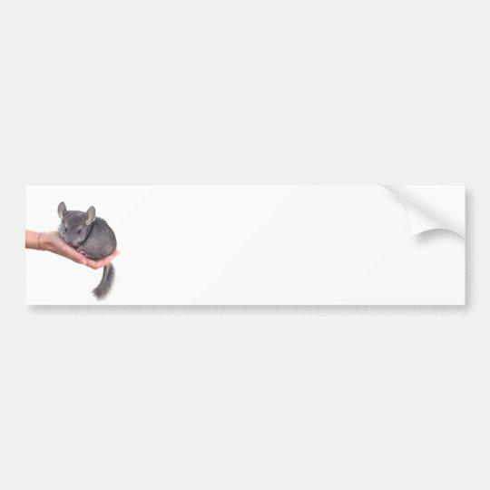 chinchilla bumper sticker