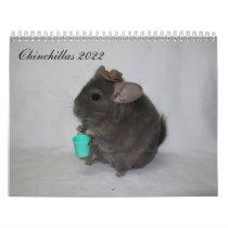 Chinchilla Calendar