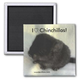 Chinchilla Love Magnet