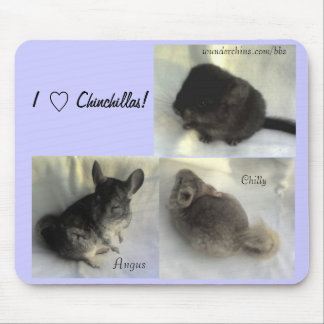 Chinchilla Love Mousepad