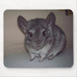 Chinchilla Mouse Pads
