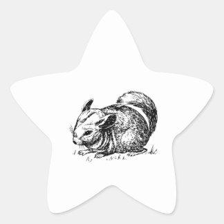 Chinchilla Pegatina Forma De Estrella Personalizadas