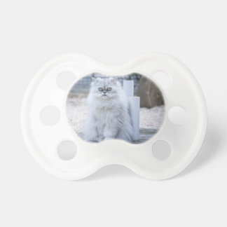 chinchilla persian pacifier