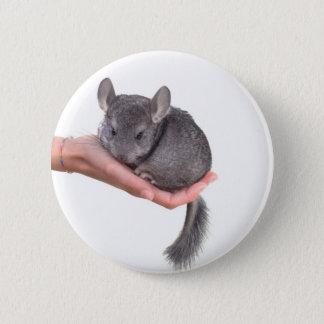 chinchilla pinback button