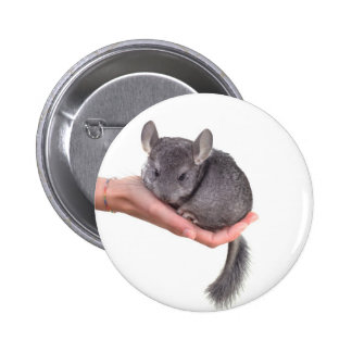 chinchilla pinback button