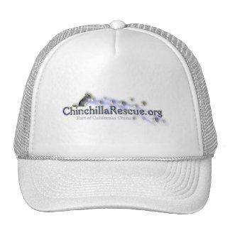 Chinchilla Rescue hat
