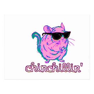 Chinchilla rosada de neón de Chinchillin Tarjeta Postal