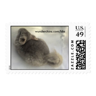 Chinchilla Stamps! Postage