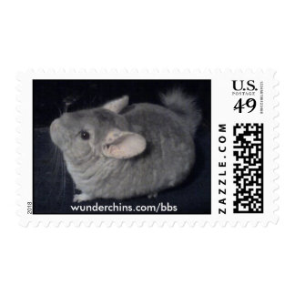 Chinchilla Stamps