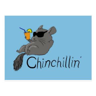 chinchillin postcard
