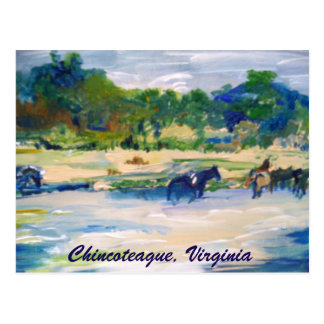 Chincoteague Island Horse painting postcard