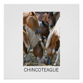 Chincoteague Island Large Poster