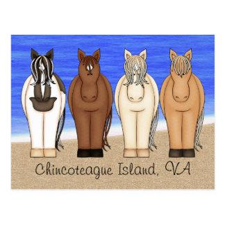 Chincoteague Island VA and Ponies Postcard
