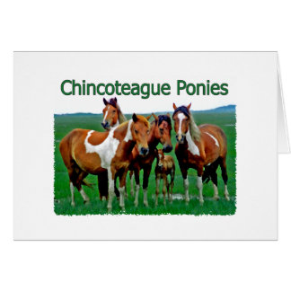 Chincoteague Ponies (family) Greeting Card