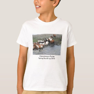 Chincoteague Ponies Youth T-shirt