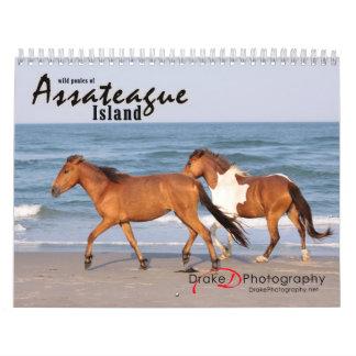 Chincoteague Pony Calendar