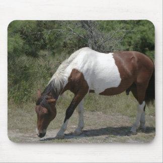 Chincoteague Pony Mouse Pad