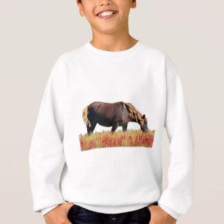 Chincoteague Pony Sweatshirt