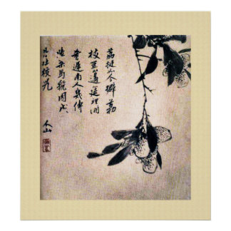 Chinese Ancient Painting, lychee Poster