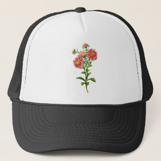 Chinese Asters Drawn From Nature Trucker Hat