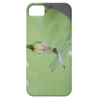Chinese Blue Dragonfly on Water Lily Bud iPhone SE/5/5s Case