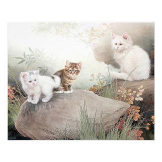 Chinese Cat Art Photographic Print