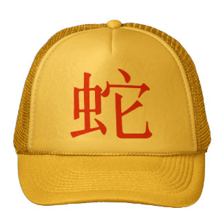 Chinese Character for Snake Trucker Hat