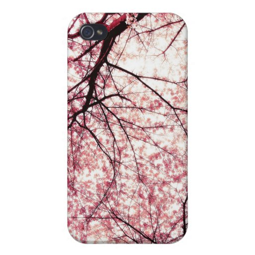 Chinese Cherry Blossoms iPhone 4/4S Cover