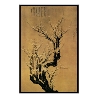 Chinese Cherry Blossoms Poster